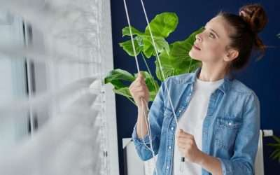 Why Blinds Is A Must In Every Miami Home?